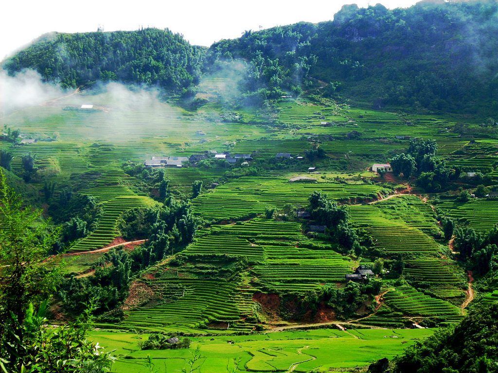 MAI CHAU TREKKING AND PROJECT ITINERARY 11D/10N